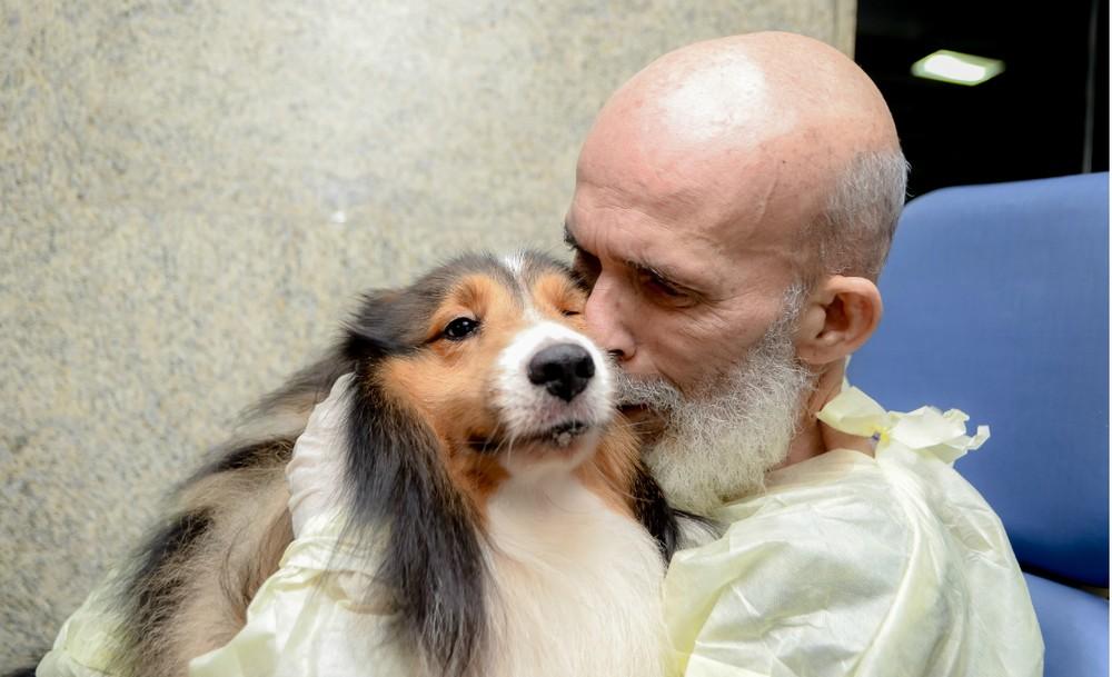 cachorro ajuda em melhora